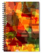 The Abstract States Of America Spiral Notebook