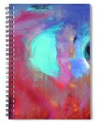 The Afterglow Spiral Notebook