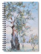 The Ancient Gum Tree Spiral Notebook