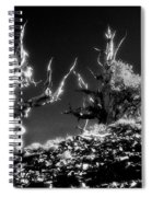 The Ancients - 1001 Spiral Notebook