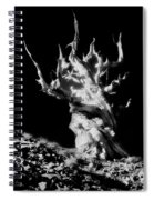 The Ancients - 1011 Spiral Notebook