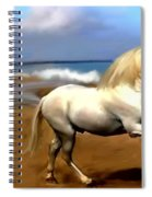 The Andalusian Spiral Notebook