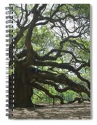 The Angel Oak Spiral Notebook
