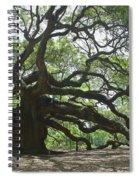 The Angel Oak Spiral Notebook