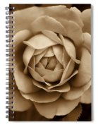 The Antique Rose Flower Spiral Notebook