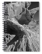 The Arch Bw Spiral Notebook