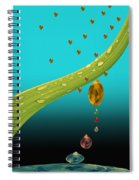 The Art Of Raining In California Spiral Notebook