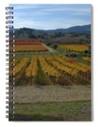 The Artist In The Vineyard Spiral Notebook