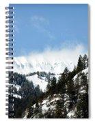 The Artwork Of Winter Spiral Notebook