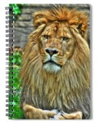 The Attentive Lazy Boy At The Buffalo Zoo Spiral Notebook