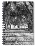 The Avenue Of Oaks Spiral Notebook