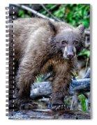 The Balance Beam Spiral Notebook