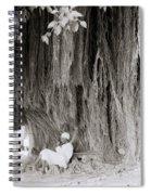 The Banyan Tree Spiral Notebook