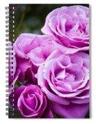 The Barbara Streisand Rose Spiral Notebook
