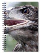The Beak Of A Preator Spiral Notebook