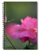 The Beauty And The Promise Spiral Notebook