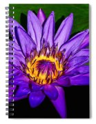 The Beauty Of A Water Liliy Spiral Notebook