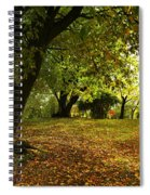 The Beauty Of Autumn Spiral Notebook