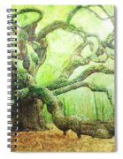 The Beauty Of Old Age Spiral Notebook