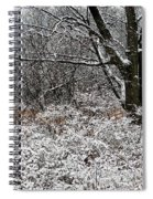 The Beauty Of Winter Spiral Notebook