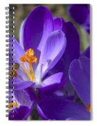 The Bee And The Crocus Spiral Notebook