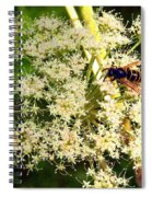 The Bee And The Flowers At Troldhaugen Spiral Notebook