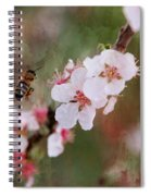 The Bee In The Cherry Tree Spiral Notebook