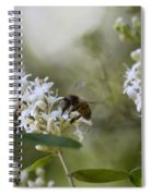 The Bee Spiral Notebook