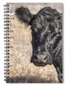 The Beef Industry Spiral Notebook