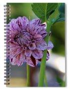 The Beginning Spiral Notebook
