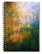The Big Rock Candy Mountain Spiral Notebook
