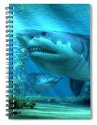 The Biggest Shark Spiral Notebook