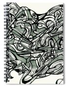 The Black And White Truth Is America Is Backwards Spiral Notebook
