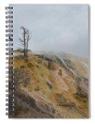 The Black Bones Of Trees Spiral Notebook