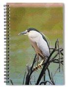 The Black Crown Night Heron Waiting For Dark Spiral Notebook