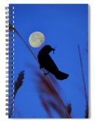 The Blackbird And The Moon Spiral Notebook