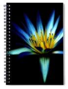 The Blue Lotus Of Egypt Spiral Notebook