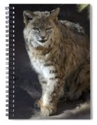 The Bobcat Spiral Notebook