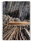 The Book Of Life II Unframed Spiral Notebook