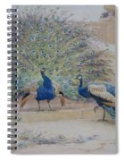 The Borrowed Plume Spiral Notebook