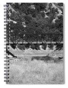 The Bridge 13 Spiral Notebook