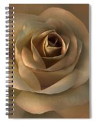 The Bronze Rose Flower Spiral Notebook