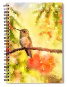 The Bubbly World Of A Hummingbird Spiral Notebook