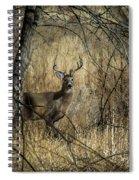 The Buck Spiral Notebook