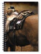 The Buckskin Spiral Notebook