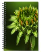The Bud Is Prettier Than The Bloom Spiral Notebook