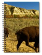 The Buffalo Dance Spiral Notebook