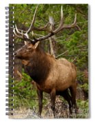 The Bull Elk Spiral Notebook