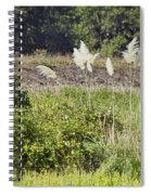 The Bushes Spiral Notebook