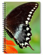 The Butterfly And The Zinnia Spiral Notebook